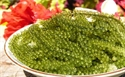 Picture of SEA GRAPES