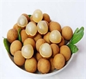 Picture of Fresh Longan Fruits
