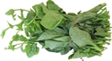 Picture of MALABAR SPINACH
