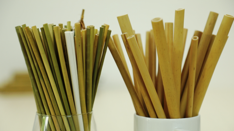 Picture of Young people enjoy the environmentally friendly bamboo straws.