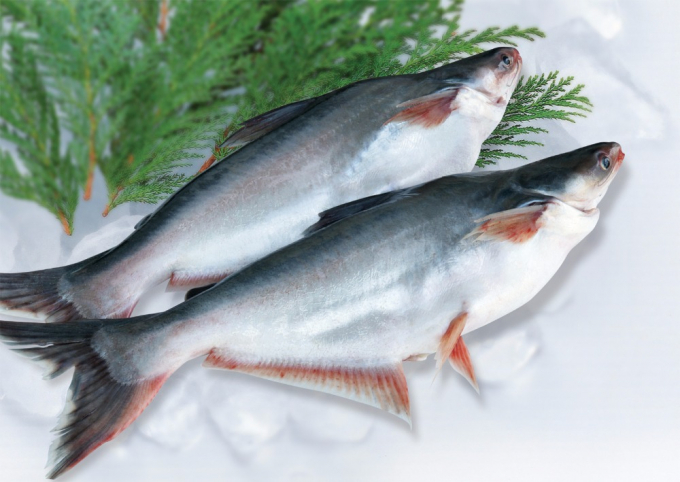 Picture of Pangasius prices in the US increased by 35% compared to the beginning of the year
