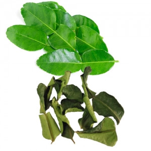 Picture of Lemon leaves in Vietnam are only for eating with chicken, going to Europe to sell 6.3 million/kg